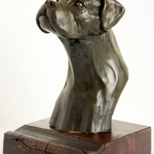 Cold Cast Bronze Boxer