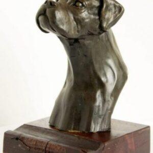 Cold Cast Bronze Boxer